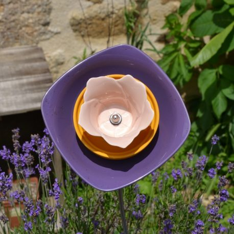 Fleur coupe violette, déco de jardin