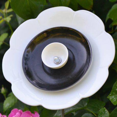 Fleur décorative pour jardin, massifs