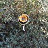 Fleur vaisselle recyclée verte et jaune, déco de jardin